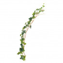 groothandel Woondecoratie: Ivy krans Hedera Lengte 180cm, groen